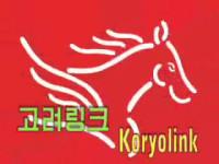 101230-koryolink-14